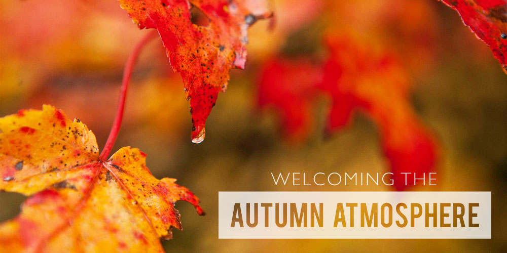 Welcoming the Autumn Atmosphere